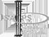ISAPS_logo